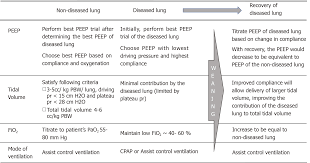 Fio2 Chart Independent Lung Ventilation Implementation Strategies And