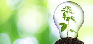 Eco friendly corporate office Architect Mad Encouraging Ecofriendly Behaviors In Your Workplace Pmc Insurance Group Encouraging Ecofriendly Behaviors In Your Workplace Pmc Insurance