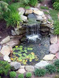 garden landscaping: Tiny Pond Like Pool With Natural Like Waterfall And  Small Plants For Enchanting