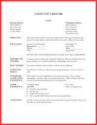 Resume Format Layout Good Resume Format
