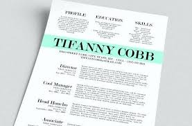 Free Cool Resume Templates Unique Cool Resume Templates Free Download Atomichouseco