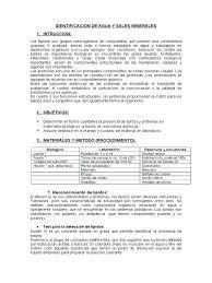 Identificaci N De Agua Y Sales Minerales Docx