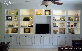 Living Room Bookcases Built In Built In Cabinets For Living Room Charming Design Built In Living