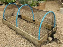 timber raised bed with crop protection hoops