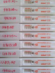 排卵検査薬 陽性 翌日
