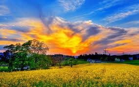 dream spring 2016 beautiful sky wallpapers hd wallpapers 96648