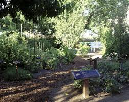 the sensory garden at the kendall jackson wine center in fulton calif in