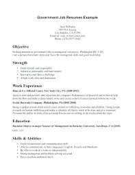 Job Application Objective Examples Government Job Resume Resume Objective For Government Job Jobs