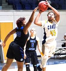 Lady Hurricanes fall to No. 10 North Georgia in hard-fought contest -  Americus Times-Recorder | Americus Times-Recorder