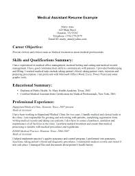Resume Example Summary resume Resume Sample For No Experience 56