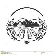 coffee plantation illustration. Delighful Coffee Coffee Plantations Banner Intended Plantation Illustration E