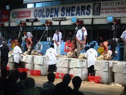 Golden Shears - Wikipedia