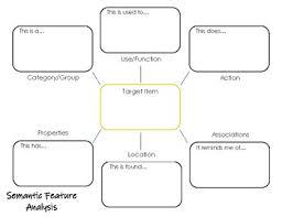 Semantic Feature Analysis