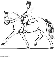 Paarden En Veulens Plaatjes Knutsels Kleurplaten