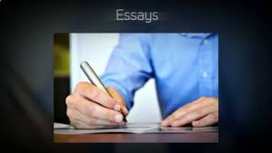 essay help forum essay forums