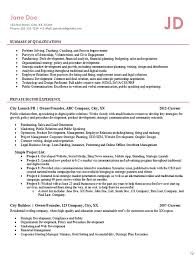 Entrepreneur Resume Example Business Owner Founder Interesting Entrepreneur Resume