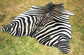 zebra cowhide rug ebony