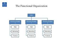 Project Organization Chart Impressive Organization Structure Stake Holder Human Resources Management Dur