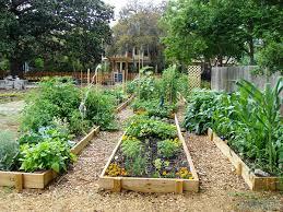 community gardening. Community Garden Gardening