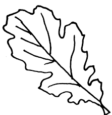 Holiday Season Fall Leaves Coloring Pages - Womanmate.com