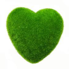 Small Picture Decoration Moss Heart Shape Stone Artificial Grass Home Decor