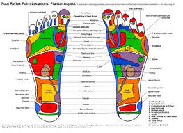 Foot Healing Chart Reflexology Charts For Student Study And Practitioner
