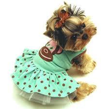Платья и <b>сарафаны для собак</b> купить в СПб