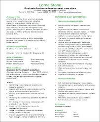 Business Development Objective Statement Business Development Resume Sample Objectives Socialum Co