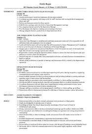 Team Manager Resume Sample Operations Team Manager Resume Samples Velvet Jobs 1