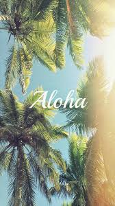 iphone 6 wallpaper tumblr beach. Delighful Beach Aloha Palm Trees IPhone 6 Wallpaper For Iphone Wallpaper Tumblr Beach N