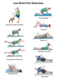 exercise for lower back pain