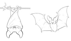 Baseball Bat Coloring Page Spiderman And Batman Pictures Halloween