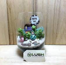 xenia glass customized succulent terrarium by lush glass door xenia glass and block