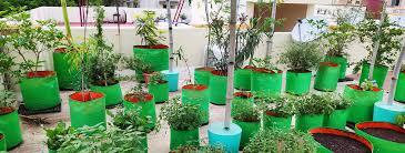 a customized terrace garden services in