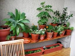 Small Picture Garden Design Ideas for Small Spaces The Micro Gardener