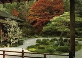 Resultado de imagen para FENG SHUI: ÁRBOLES Y PLANTAS