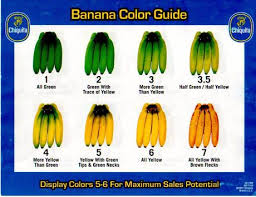 The Chiquita Banana Color Guide The Most Popular Shades Are