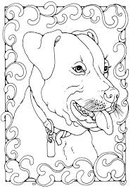 Kleurplaat Engelse Stafford Kleurplaten Dieren Stafford Pitbull
