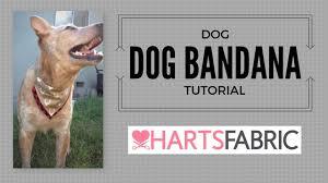 dog collar bandana free pattern included harts fabric blog