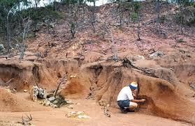 soil erosion lesson for kids com soil erosion happens in all natural environments