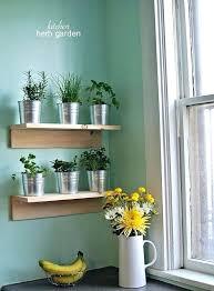 kitchen herb planter best herbs for kitchen garden remarkable kitchen wall herb garden and best wall