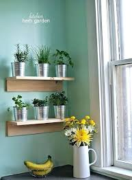 kitchen herb planter best herbs for kitchen garden remarkable kitchen wall herb garden and best wall