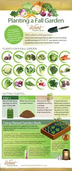 Small Picture How To Design A Garden From Scratch The Making Vegetable In Your