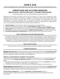 Senior Sales Executive Resume Sales Sales Lewesmr