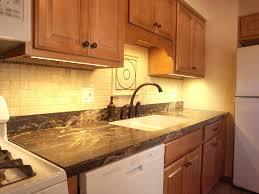 Under Kitchen Sink Cabinet Furniture Stunning Under Cabinet Lights For Kitchen With Wooden