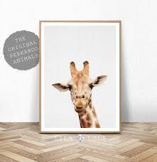 giraffe print safari nursery animal wall art large printable poster digital boys room decor baby shower decoration giraffe photo