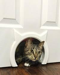 the kitty pass interior cat door pet door wall mounted cat flap the kitty pass