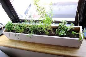 Kitchen Herb Garden Planter Box