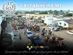 imagem de Castanheira Mato Grosso n-5