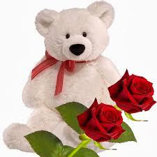 adorable teddy bear wallpaper fresh red rose teddy bear gift